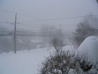 Snow_21206